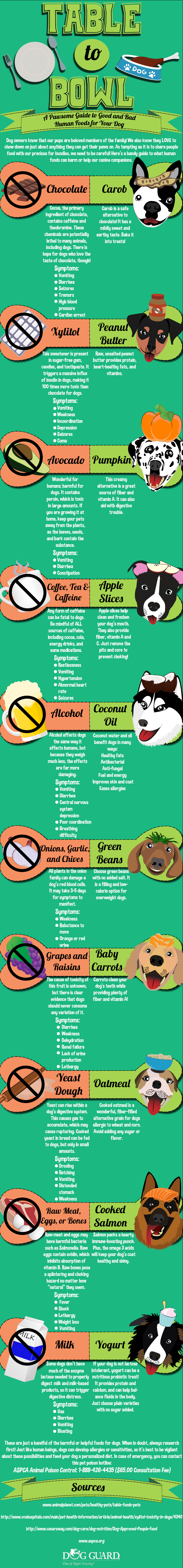 Table to Bowl: A Pawsome Guide to Good and Bad Human Foods for Your Dog - DogGuard.com - Infographic