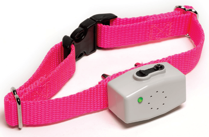 rechargeable dog fence collar Wichita