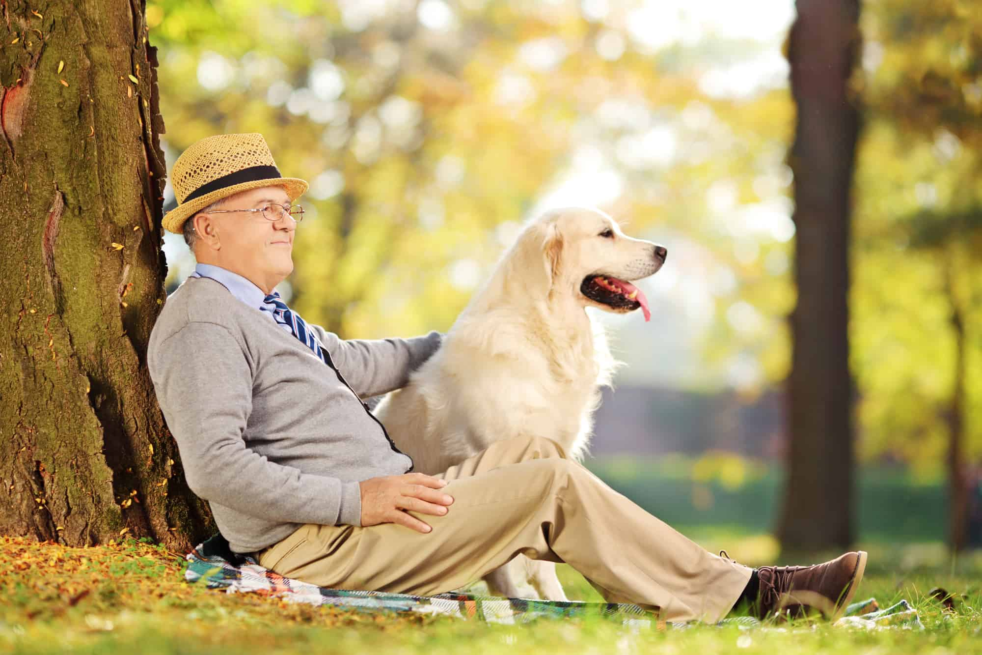 Aging in Place with Pets