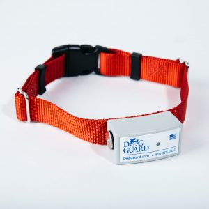 DG9XT Receiver Collar